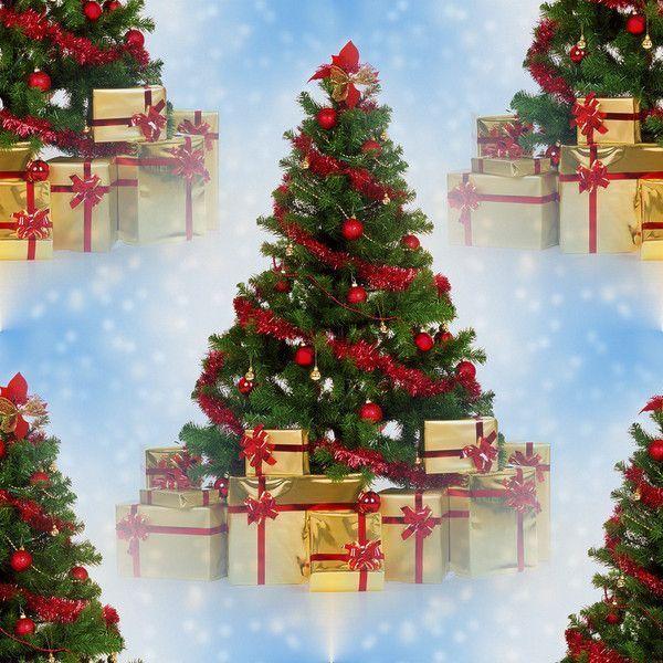 Sapin de Noel sapin de noel histoire : Histoire du sapin de Noël