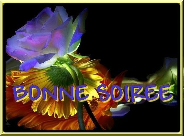 Bonjour/bonsoir mai Fa8b1a4f